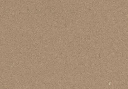 Kamštinė grindų danga Original Camel