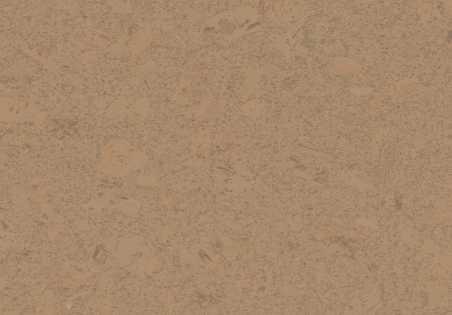 Kamštinė grindų danga Shell Camel