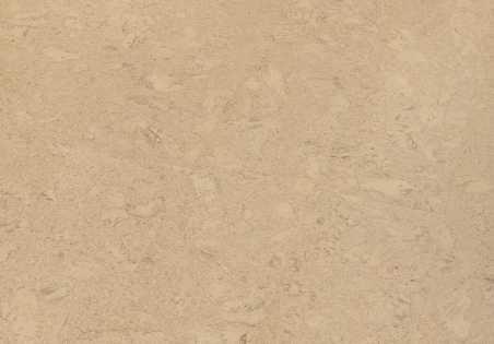 Kamštinė grindų danga Amorim Wise Shell Marfim