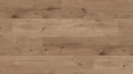 Laminuotos grindys Kaindl Classic Touch Wide 8.0 Ąžuolas Ferrara Wildlife