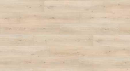 Laminuotos grindys Haro Tritty 100 Campus Ąžuolas Emilia Velvet White