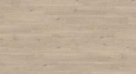 Laminuotos grindys Haro Tritty 100 Ąžuolas Contura Stone Grey su akustiniu SILENT PRO paklotu